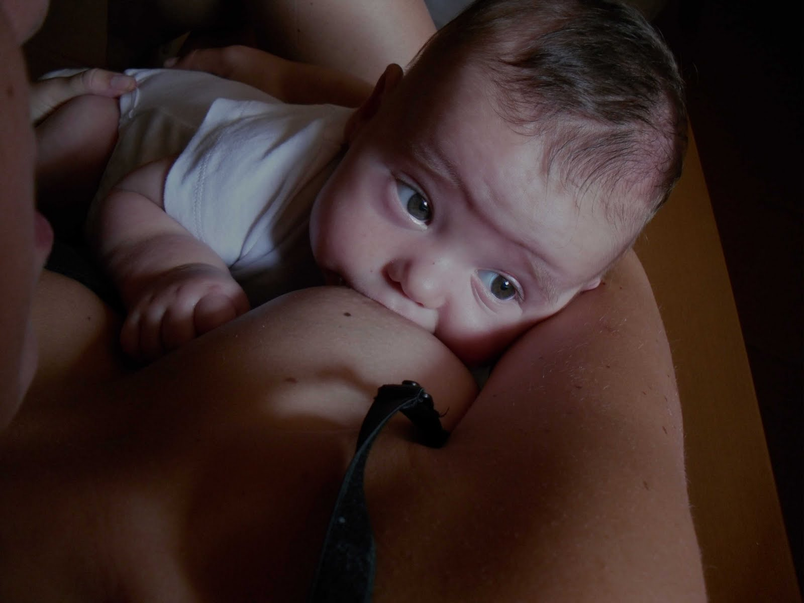 Teta - lactancia materna